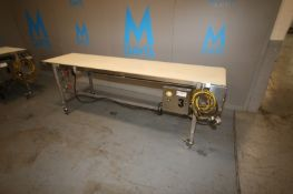 "Straight Section of Conveyor,Overall Dims.: Aprox. 8' L x 23-1/4"" W Belt, Mounted on S/S Portable"