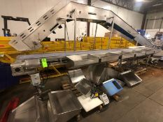 S/S VARIABLE SPEED CONVEYOR, SIDE CHOPPINGTABLES WITH CUTTING BOARD STANDS, WITH S/S WASHDOWN MOTOR,