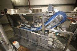 Commercial S/S Chips/Chunk Feeder Conveyor,S/N MU120310604, Job No.: 10604, with Flighted