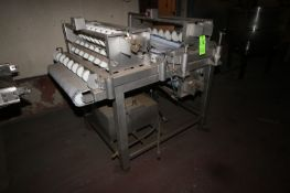 """PES S/S Laner Conveyor, with Plastic Belt, with Aprox. 32"""" W Belt (LOCATED IN DOUGLAS, GA) (Rigging,"""
