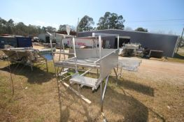 """S/S Platform, Overall Dims.: Aprox. 10' L x 7' W x 85"""" H, with S/S Hand Rails & S/S Grating (LOCATED"""