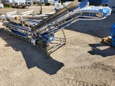 Inline Conveyor for Food Packaging (Unit #56) (Located New Bothwell, Manitoba Canada)