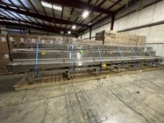 (3) SECTIONS OF STRAIGHT CONVEYOR ON (1) SKID,