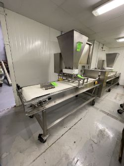 MBC FOOD MACHINERY CORP MANICOTTI AND LASAGNE LINE, 16-VALVE SAUCE APPLICATOR, EQUIPPED WITH