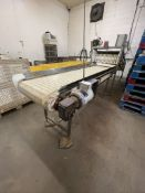 """S/S OUTFEED CONVEYOR,APPROX. 102"""" L X 24"""" W, EQUIPPED WITH BALDOR 1/2 HP DRIVE MOTOR, 230/460 V("""