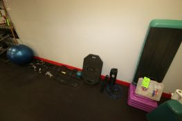 Lot of Assorted Gym Equipment, Includes Step Platform, Bar Cushions, Jump Rope, Harbinger Weighted