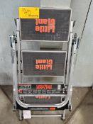 Little Giant (1) 3-Step Folding Ladder