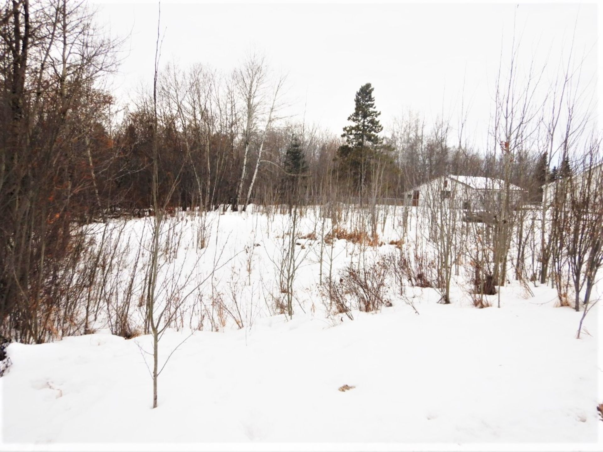 BARE LOT IN THE VILLAGE OF MIRROR, ALBERTA - LEGAL DESCRIPTION: PLAN 0728572 BLK 40 LOT 38 *ONLY - Image 2 of 4