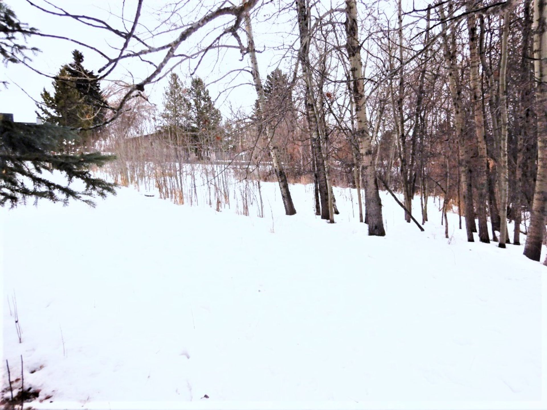 BARE LOT IN THE VILLAGE OF MIRROR, ALBERTA - LEGAL DESCRIPTION: PLAN 0728572 BLK 40 LOT 38 *ONLY - Image 4 of 4