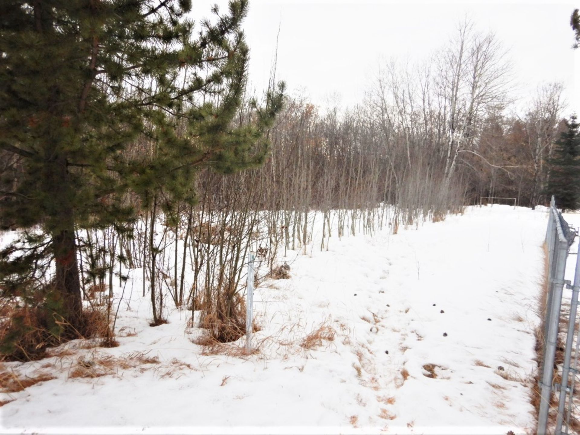 BARE LOT IN THE VILLAGE OF MIRROR, ALBERTA - LEGAL DESCRIPTION: PLAN 0728572 BLK 40 LOT 38 *ONLY - Image 3 of 4