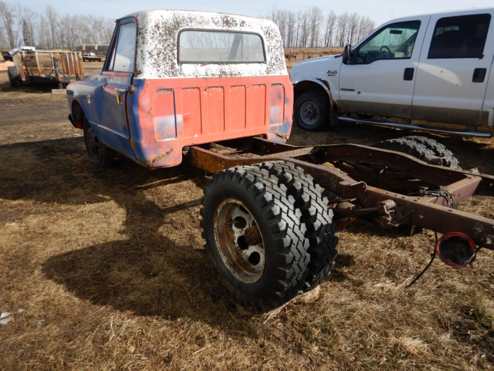 1970'S CHEV 30 CAB & CHASSIS - REG CAB, DUALS, NO ENGINE OR TRANSMISSION S/N CE3371125498 - Image 5 of 9