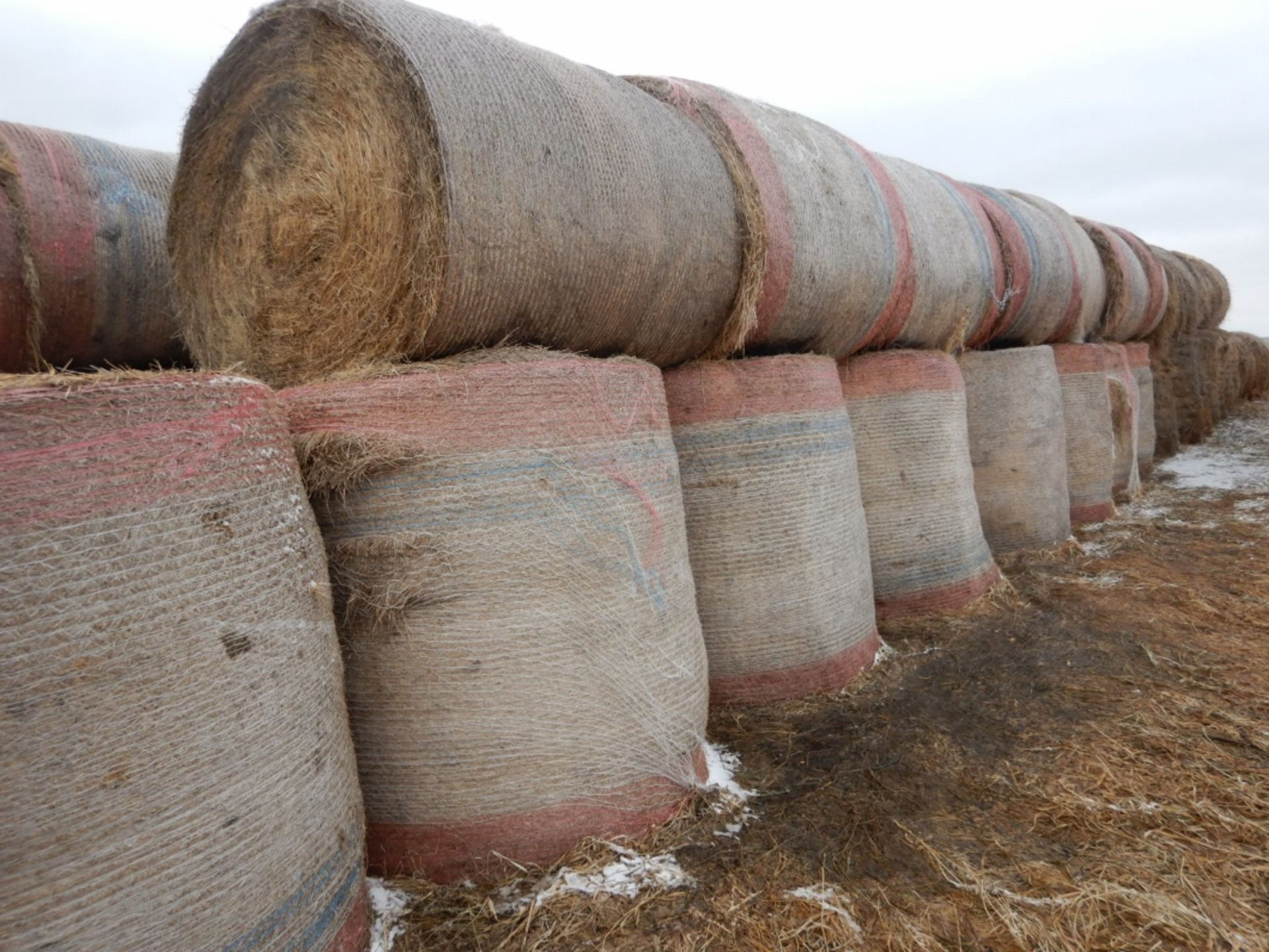 100 ++ ROLLS OF GRASS HAY - MOSTLY W/NET WRAP - Image 5 of 9