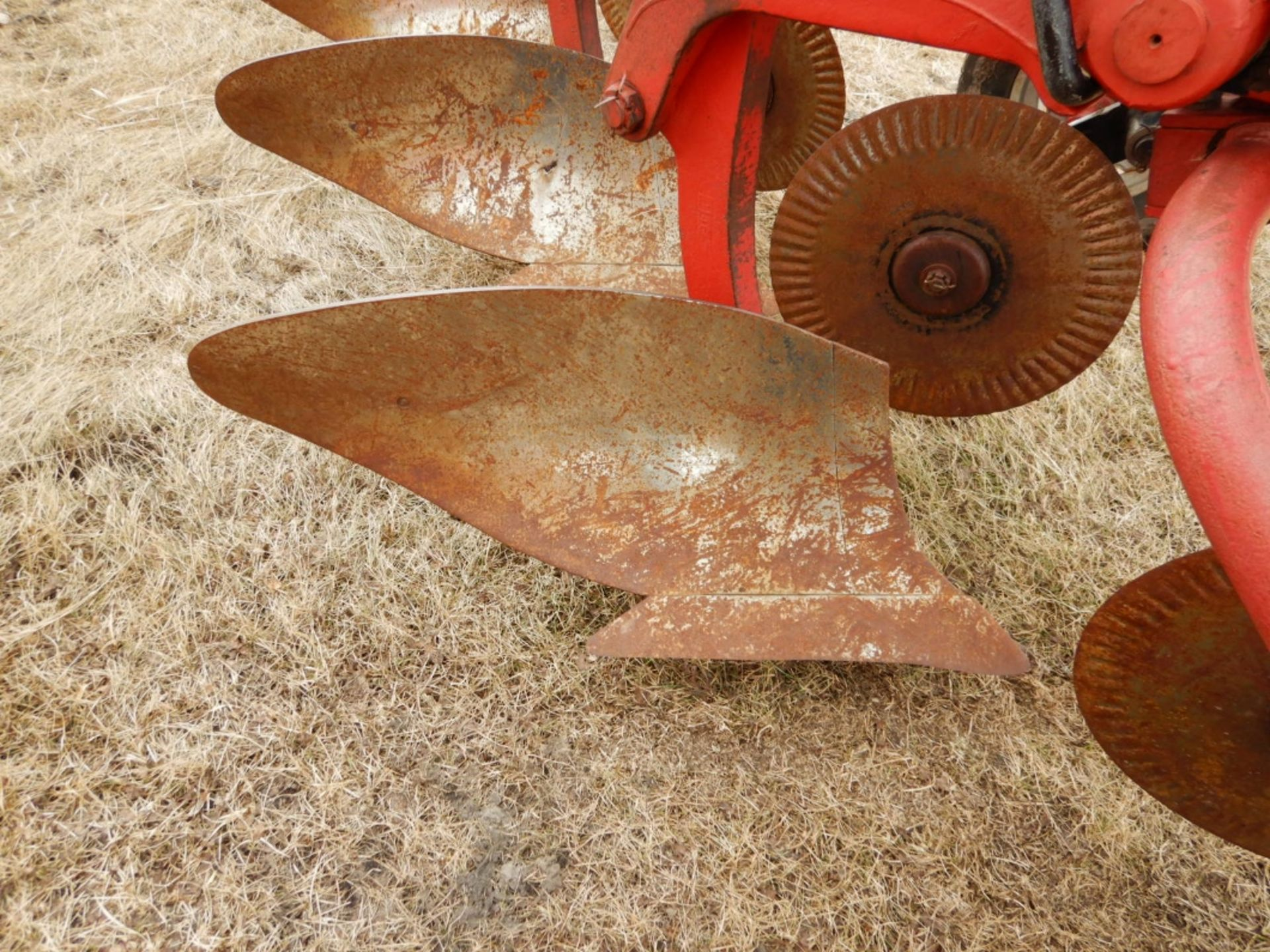 CASE IHC 770 - 5 BTM. PLOW W/COLTERS - Image 4 of 5