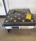 WEIGH-TRONIC SCALE; MODEL 3835, S/N 5R68920463, 250 LB. CAPACITY ***LOCATED AT 12850 DARICE PARKWAY,