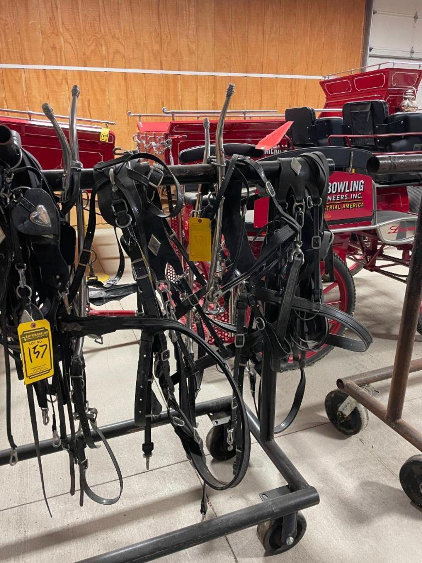 Amish Made Team Set of (2) Chrome Heart and Diamond Brahma Webb Breast Pull Type Haflinger - Image 2 of 2