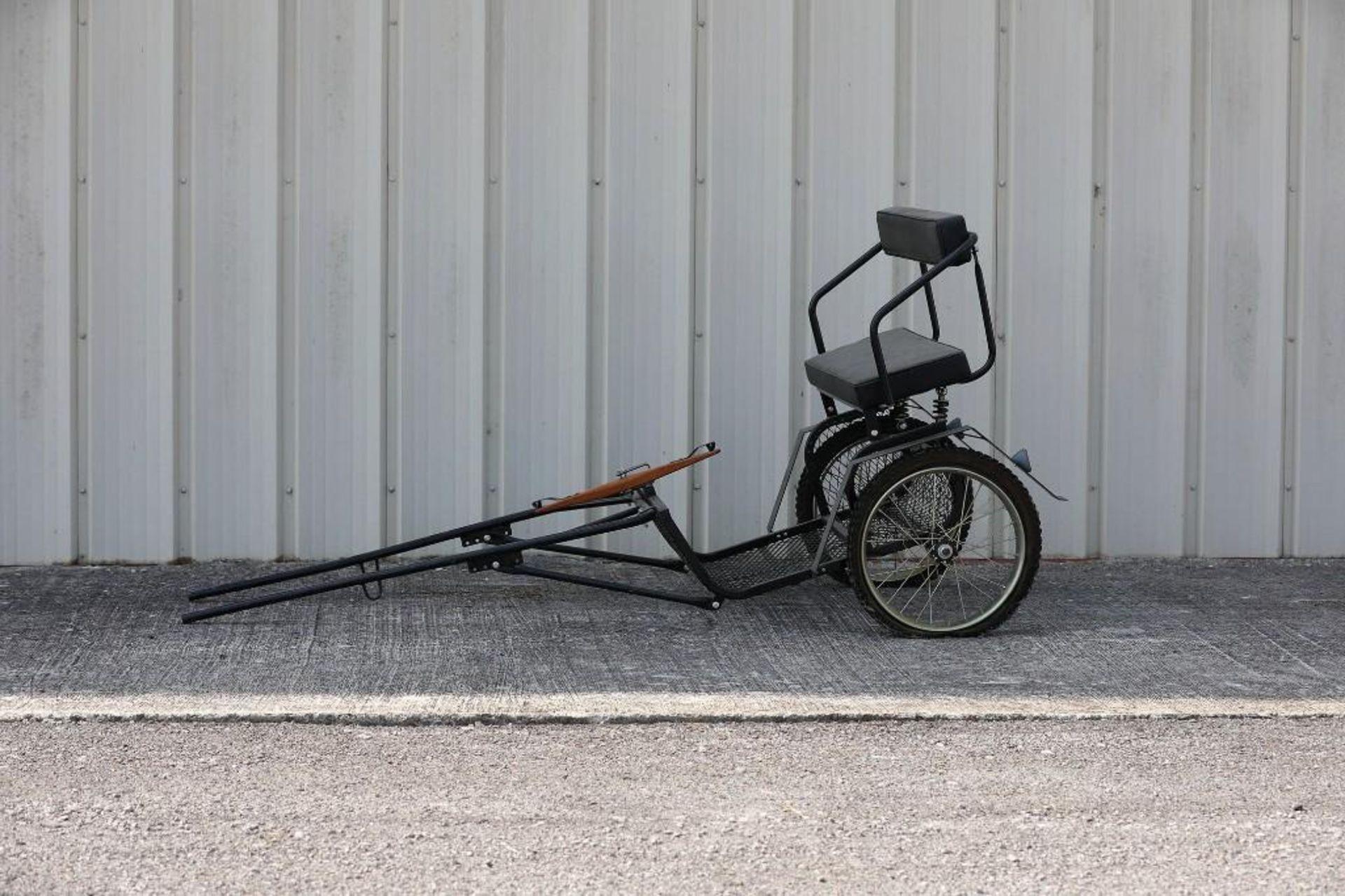 2-Wheel Pony Cart