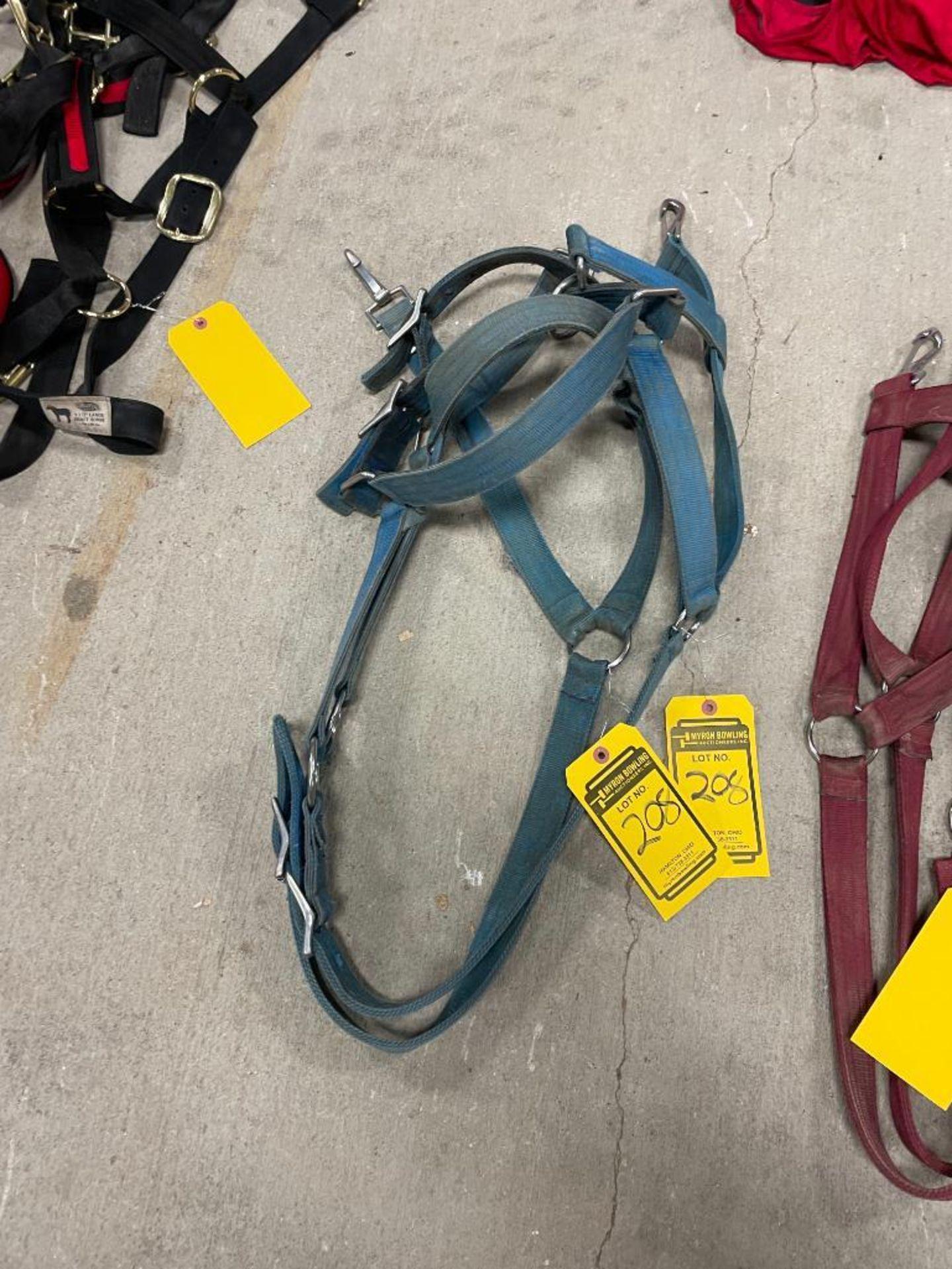 (2) Blue Nylon Draft Horse Halters