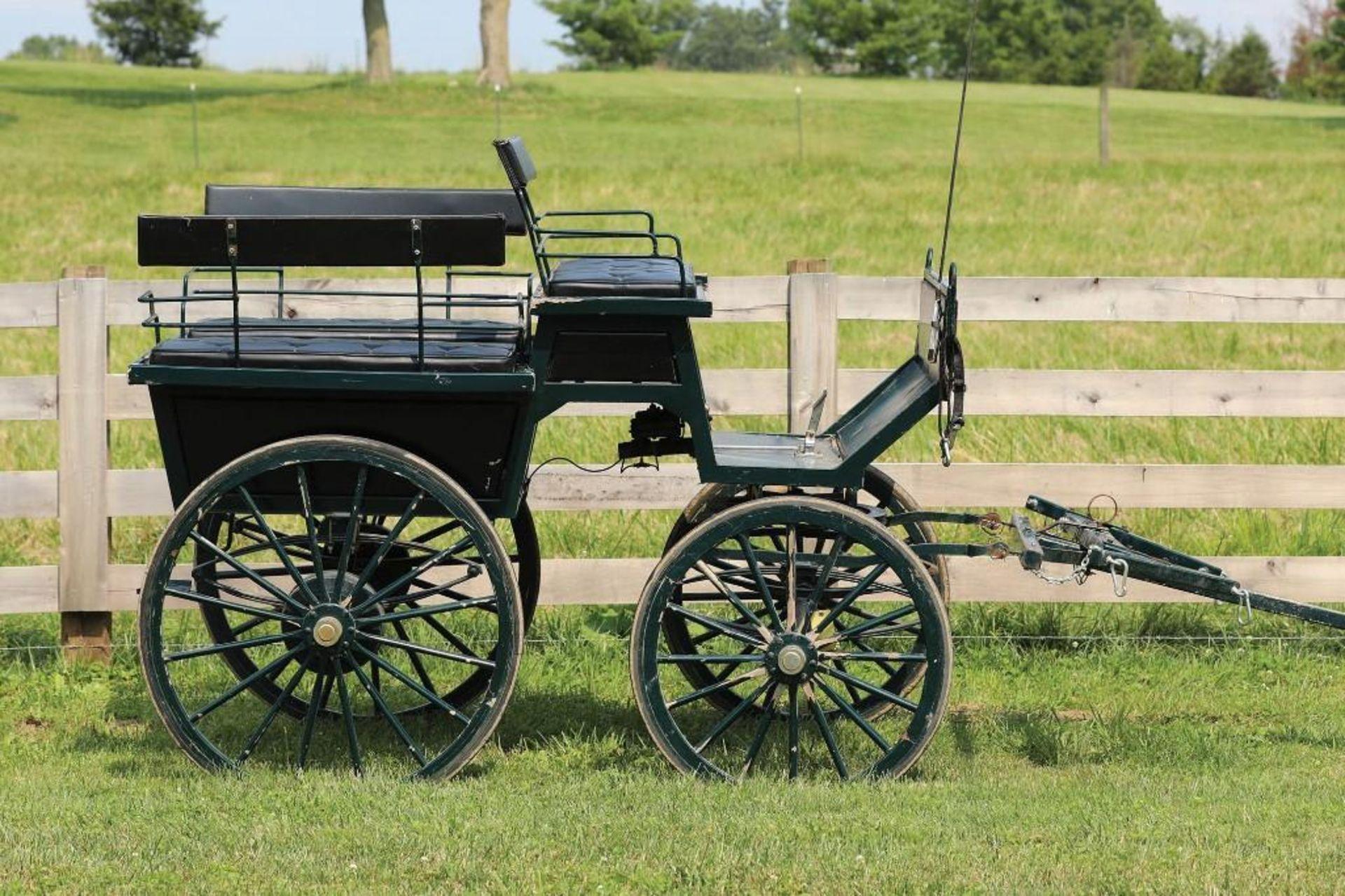 Wagonette w/Pole & Brakes