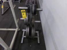 WEIGHT RACK W/ WEIGHTS: (2) 2.5 LB., (4) 5 LB., (2) 10 LB., (2) 25 LB., (4) 45 LB.