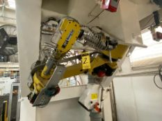 Fanuc articulated Robot, model M-16iB/20, type A05B-1216-B202, Serie number, R05176091