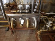 Stainless Steel Flow Fitting Manifold, W/ Valves | Rig Fee: $150