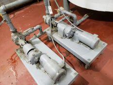 Lot of (2) Gear Drive Oil Pumps   Rig Fee $225