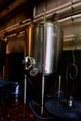 2013 Specific Mechanical 20 BBL Fermenter, Glycol Jacketed, Approx 5' - Subj to Bulk | Rig Fee $700