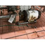 """FRISTAM CENTRIFUGAL PUMP, 2.5"""" INLET BY 2"""" OUTLET, 5 HP, S/N: 141172190 - Subj to Bulk   Rig Fee $75"""