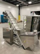 "Bottle Elevator, MGS Hopper Inclined Conveyor, All Stainless Steel, 14"" Wide Flight 