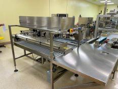 Stainless Steel Frame Conveyor Downstream of Labeler - Subj to Bulk | Rig Fee: $350