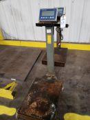Mettler Toledo Portable Digital Platform Scale, Model IND236, S/N: C008024435 | Rig Fee: $25