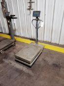 Mettler Toledo Digital Platform Scale, Model IND236, S/N: B405259980 | Rig Fee: $25