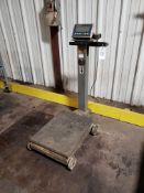 Mettler Toledo Digital Platform Scale, Model IND236, S/N: B344933165 | Rig Fee: $25