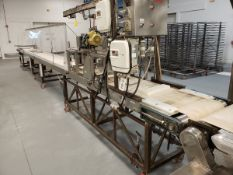 Process Conveyor, W/ Guillotine Cutters - Subj to Bulk (Delay Delivery) | Rig Fee: Contact Rigger