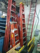 Lot of Step & Extension Ladders | Rig Fee $35