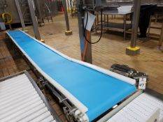 """Exit Belt Conveyor Section, 24"""" X 22' 
