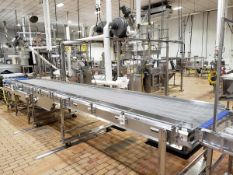 """Nercon Wire Mesh Conveyor Section, 40"""" X 24' - Subj to Bulk 