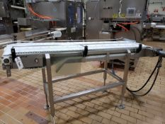"Slicing Saw Outfeed Conveyor, 20"" X 8' - Subj to Bulk | Rig Fee: $75"
