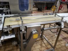 "Bandsaw Infeed Conveyor, 14"" X 5' - Subj to Bulk | Rig Fee: $75"
