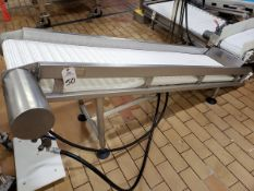 """Inclined Belt Conveyor Section, 16"""" X 87"""" 