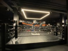Throwdown Elite Series 18' x 18' Matted Boxing Ring SEE DESCRIPTION