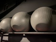 (3) Life Fitness Inflatable Stability Balls 65cm