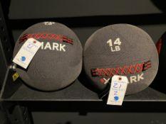 (2) X Mark Medicine Balls - 1 Is 20 Lb. & 1 is 14lb.