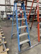 WERNER FS106 6' Fiberglass Step Ladder