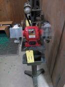 "PEDESTAL BENCH GRINDER, SUNEX MDL. 5002A, 8"", w/lamp, 3/4 HP motor"