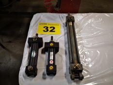 LOT OF ASSORTED HYDRAULIC CYLINDERS