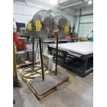 LOT: (3) Floor Fans, (1) Box Fan on (1) Pallet