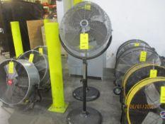 Worksmart Standing Fan, 20 in.