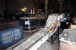 150 in. (est.) Electronic Belt Conveyor with 24 in. (est.) Step.