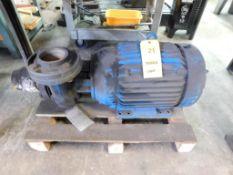 20 HP Centrifugal Pump (LOCATION: 520 DRESDEN ST., KALKASKA, MI 49646)